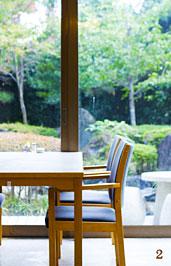 庭園を眺めるイメージ